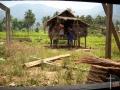 jeden-z-domow-w-wiosce-mindoro-philippines